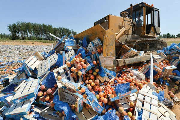 A worker uses a bulldozer to crush crates of peaches outside the city of Novozybkov, about 600 km from Moscow, on August 7, 2015. Russian officials on August 6 steamrollered tonnes of cheese as they began a  controversial drive to destroy Western food smuggled into the crisis-hit country despite a public outcry. President Vladimir Putin last week signed a decree ordering the trashing of all food -- from gourmet cheeses to fruit and vegetables -- that breaches a year-old embargo on Western imports imposed in retaliation to sanctions over the Ukraine crisis. AFP PHOTO / ONLINER.BY