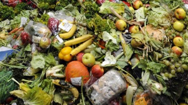 povrće i voće